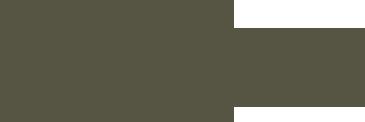 handrwitten_napa_logo
